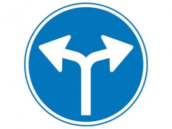 RVV Verkeersbord D07