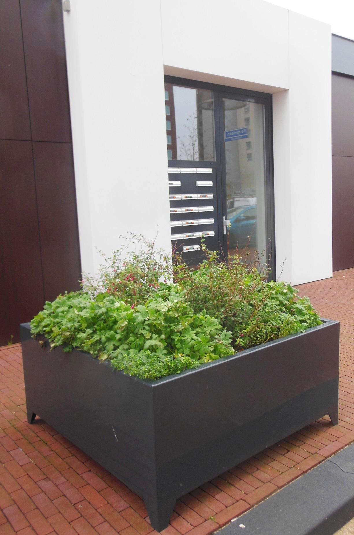 Bloem- & plantenbakken